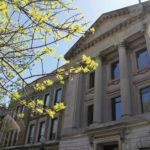 Stipendija za medjunarodne studente u SAD-u