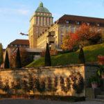 Stipendije ekonomskog fakulteta u Švajcarskoj