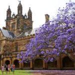 Stipendije za brucoše na univerzitetu u Australiji