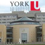 York University stipendije u Kanadi