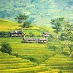 Pridružite se projektu razvoja u Kambodži