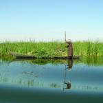 Potreban razvojni/projektni asistent Waterkeepers Iraq organizaciji