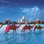 Volonterski program EduCARE organizacije u Indiji